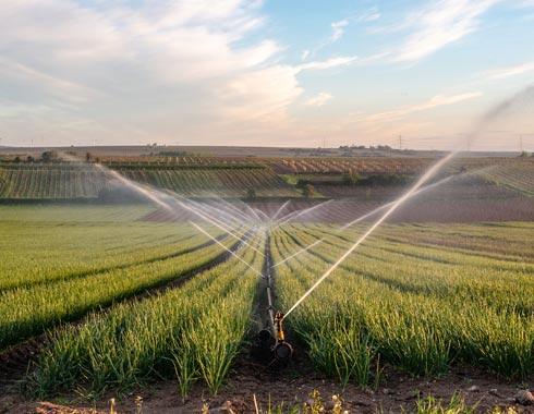 Un expert à l'écoute de vos besoins en arrosage et en irrigation près de Béziers